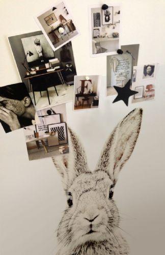 Rabbit print magnet friendly wallpaper, Rockett St George